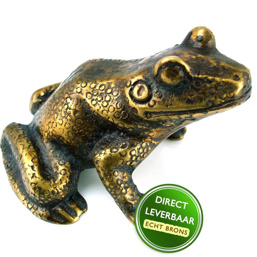 Bronzen beeldje kikker Art Unica