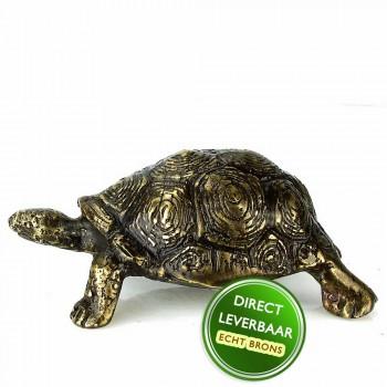 Bronzen beeldje Schildpad Art Unica