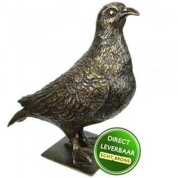 Duif bronzen beeld