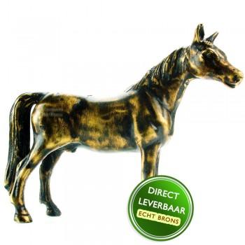 Bronzen beeldje Veulen Art Unica