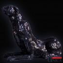 Zwarte panter beeld